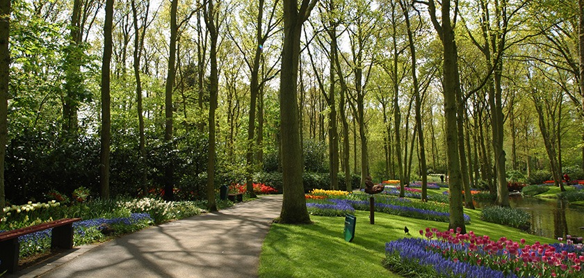 Image of a park - there is a path running in-between trees, and garden beds. There's a small river to the right.